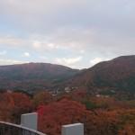 箱根彫刻の森美術館 紅葉